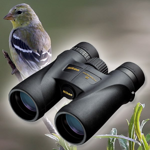 Monarch 5 12x42 Binocular with ED Glass