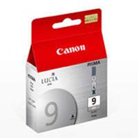 Ink Cartridge PGI9 Grey
